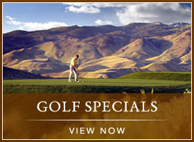 golf specials